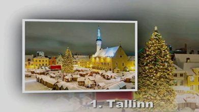 Egenanställd i Estland