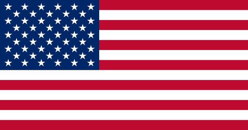 Egenanställd i USA