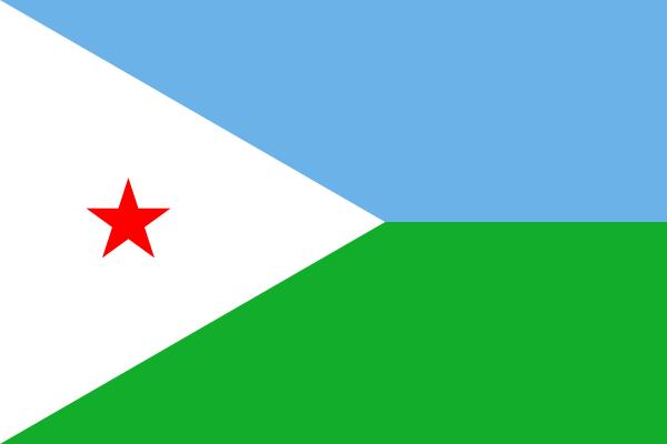 Egenanställd i Djibouti